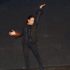 Se pone flamenco